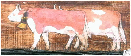 Petit troupeau de vaches