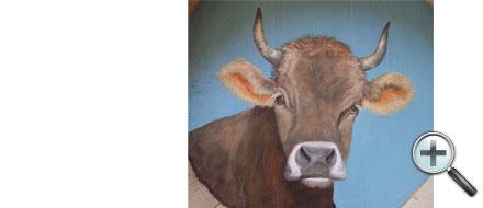 Tête de vache dans dietzet