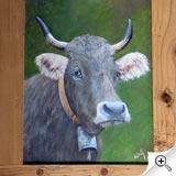 Vache grisonne