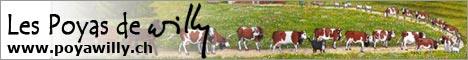 Les poyas de Willy, poyas personnalisées ou traditionnelles peintes sur bois.